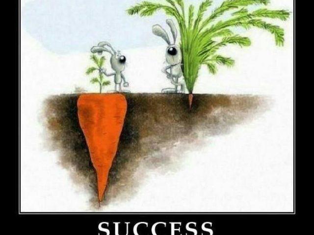 2017-success